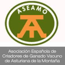 Logo ASEAMO
