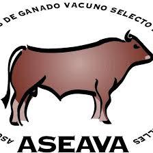Logo ASEAVA